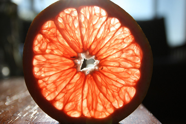 Grapefruit in der Sonne